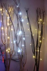 عيد الميلاد الضوء