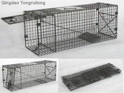 Cat pieghevole Trap per Animal Control (914048-A)