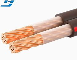 Audio de calibre 16 Cable de altavoz