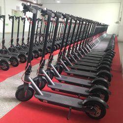 Cheap adultes Citycoco 2 roues scooter électrique 8,5 pieds pneus pliable Self-Balancing Scooter électrique 280W