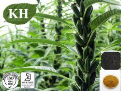 Uittreksel het van uitstekende kwaliteit Sesamin van Sesamzaden 60% HPLC