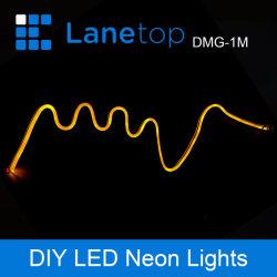 장식적인 LED 네온 등 LED