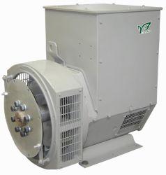 Ac-Dynamo'S Van Synchrone Generator Zonder Borstels