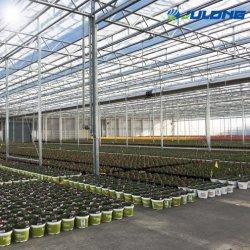 Промышленного сельского хозяйства пластиковую пленку вентиляции оранжерее парниковых