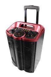 Shinco nouvelle arrivée sans fil Bluetooth Professionnel 12 pouces de haut-parleurs multimédia karaoké
