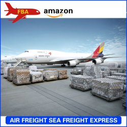 Китай в США и Европе Fba Amazon DDP, грузовых самолетов; грузовых самолетов, отгрузки, судна, экспедитор, доставки грузов и направление