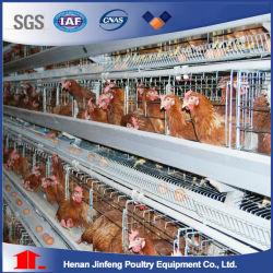 Fabricant Chinois Hot Sale Poulet automatique pour les poules pondeuses en cage Cage cage de l'élevage de volaille