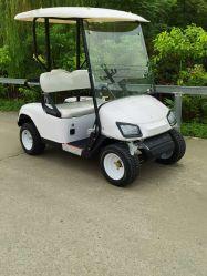 2 plazas off road de la Utilidad de alimentación por batería eléctrica Mini aeropuerto coches de Golf Cart