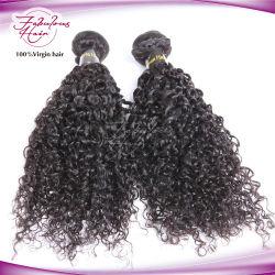 Commerce de gros cheveux humains brésilien Remy Hair Extensions Curly trame