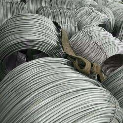 القضيب السلكي للآلات الملفوفة الساخنة Nail SAE1006 SAE1008 بطول 5,5 مم 6,5 مم سعر ملف قضيب الأسلاك الفولاذية