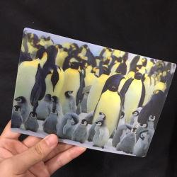 Efeito 3D Lenticular de serviços de impressão de cartões 3D de Natal