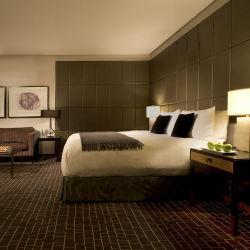Двойная кровать куин-сайз современной деревянной мебелью с одной спальней и гостиной отеля