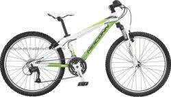 24polegadas 21 Sellz Quente Velocidade Mountain Bike/MTB Bike/Mountain Bike/MTB aluguer/Atb Bike