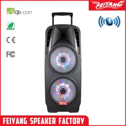 Krachtig gebruikt Stadion Broadcasting TWS Dual 10 inch PA PRO Audio-luidspreker met Karaoke-batterij