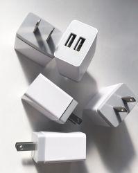 2 порт USB дорожное зарядное устройство для iPad/iPhone