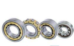 SKF NJ2308ecm цилиндрических роликовых подшипников Nj2309 Nj2310 Nj2312 Ecj Ecp Ecm