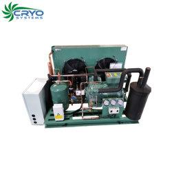 Refroidi par eau de condensation de fabricants de l'unité de refroidissement à air pour l'unité de stockage à froid de fruits et légumes