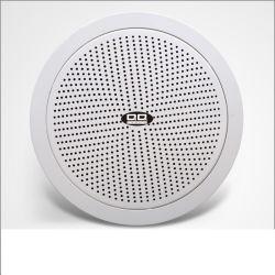 """Haut-parleur de plafond classique de base avec 5 """" Haut-parleur 6 W"""