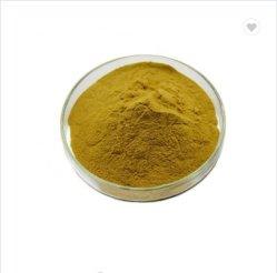 Wolfberry Auszug-Puder, Lycium Barbarum Goji Beeren-Auszug, Polysaccharide