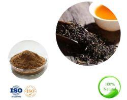 10 : 1 Nature Extrait de thé noir en poudre poudre de thé de perdre du poids