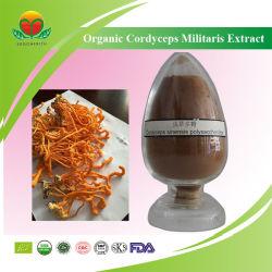 Suministro de fabricación de Cordyceps orgánicos Extracto Militaris