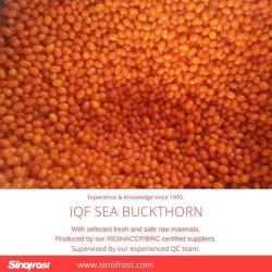 Nova cultura, IQF mar congelados Buckthorn Congelados Sea Buckthorn, congelado IQF cultivadas Sea Buckthorn, IQF Havthom congelada, IQF Mar Selvagem Buckthorn, limpo, boa qualidade