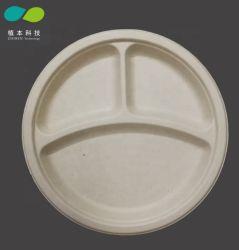 Piatto o cassetto biodegradabile della frutta dell'alimento della canna da zucchero