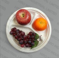 10 runde Bagasse-Platte des Zoll-3-Compartment mit umweltfreundlichem biodegradierbarem Zuckerrohr