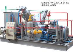 Sumpf-CNG Kolben, der Kompressor für Tankstelle hin- und herbewegt