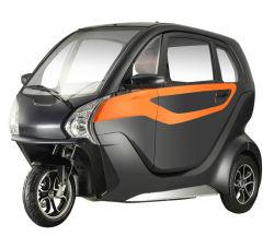 El año 2020 Popular Mini Coches nuevos de 2 plazas de alta velocidad de 3 ruedas de 1200W~3000W los coches eléctricos en China para adultos