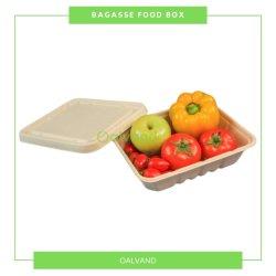 أدوات المائدة القابلة للتحلل البيولوجي / قابلة للتفكيك وقصب السكر Bagasse الغذاء التغليف (صندوق الغذاء/حاوية الطعام)