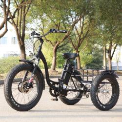 Disque de frein Tektro en alliage aluminium 3 roue de la Chine Tricycles électriques motorisé pour les personnes handicapées