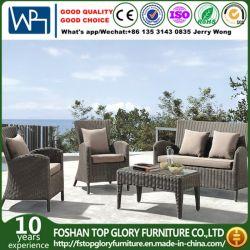 Для использования вне помещений плетеной мебели сад диван и уголок для приготовления чая в таблице (TG-1399)