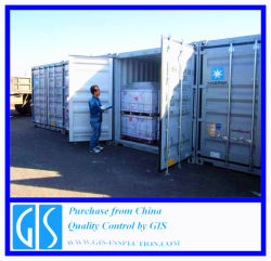 De Supervisie van de Lading van de container in China/Kwaliteitsbeheersing