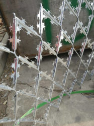 Haute qualité a élargi le grillage de séparation de fer barbelé concertina Razor Net