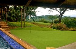 スポーツのゴルフ(GFN)のための最もよい品質の人工的な草