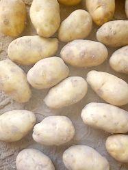 Preiswerte ausgezeichnete Qualitätsfrische Kartoffel