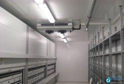 Niedrige Temperatur-große Schuppen-Kühlraum für Verkauf