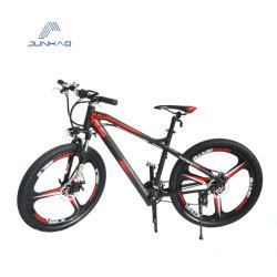 Vélo de montagne électrique 250 W avec batterie au lithium d'alimentation de frein à disque