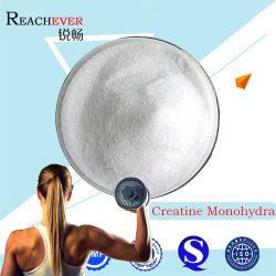 Complément nutritionnel de monohydrate de créatine (CAS 6020-87-7)