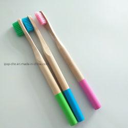 カラータケの歯ブラシが付いている大人の円形のハンドル