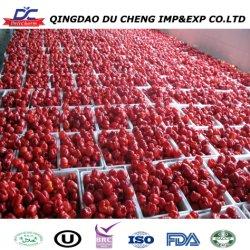 Rode Capsicum IQF Bell Pepper Strips bevroren rode Peper in plakjes