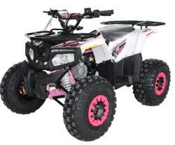 Kettenantrieb ATV 125cc mit EPA-Zertifikat (ATV125cc-2)