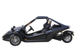 Fabrik Price ATV 250cc 3 Wheels Racing ATV Tricycle Quad