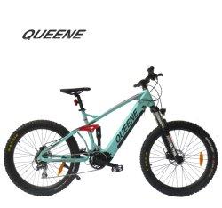 Queene/EN15194 электрический велосипед в европейском стиле и 27,5-дюймовый горных шины с помощью скрытых аккумуляторной батареи