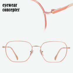Het BasisFrame Eyewear van Ractangle voor de Roestvrije Optische Oogglazen van Mannen & van Vrouwen