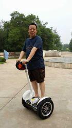 Sunnytimes- 2 Rad-elektrischer Roller Seg I2 X2