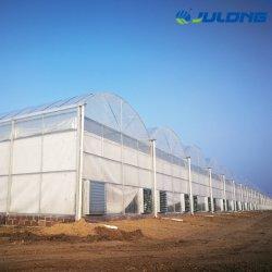 Completar la película de plástico de Span varios gases de efecto para la venta con sistema de calefacción y sistema de refrigeración Casa Verde para el tomate y pepino/vegetal y la plantación de fresas