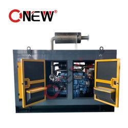 Портативный дешевые малых генераторов природного газа генератор Бензиновые системы питания сжиженным газом и сжатом природном газе