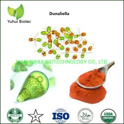 Diätetische Ergänzungen AntioxidansDunaliella Saline-Auszug-Beta-Carotin